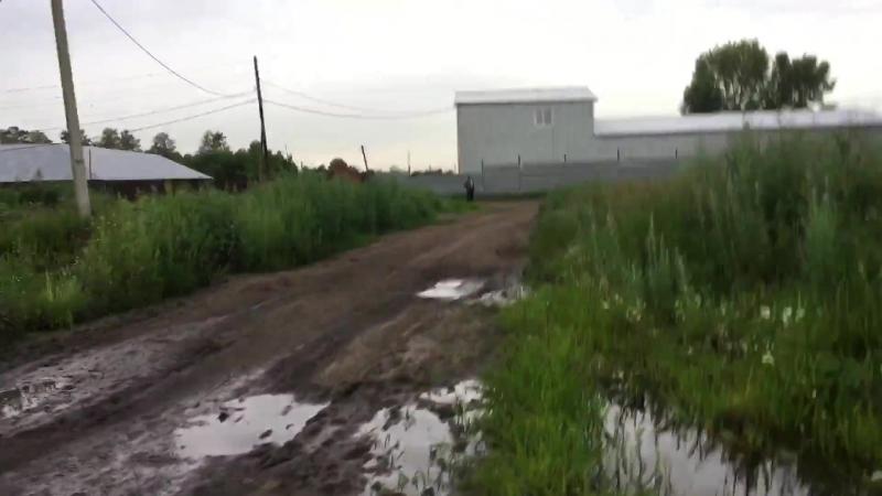 Экологическое инспектирование выявили нарушение в селе Толмачёво! ВООП экологическая инспекция