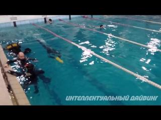 Скоростное подводное плаванье.