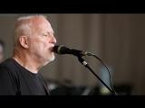 Дэвид Гилмор_ Широкие горизонты _ David Gilmour_ Wider Horizons