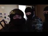 Евгений Кулик vs Грибы - Тает лёд.240