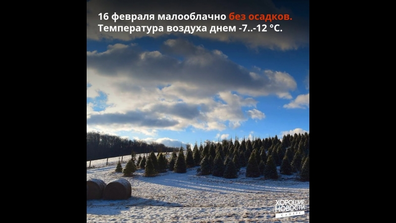 В ближайшие дни в регионе сохранится холодная погода без осадков