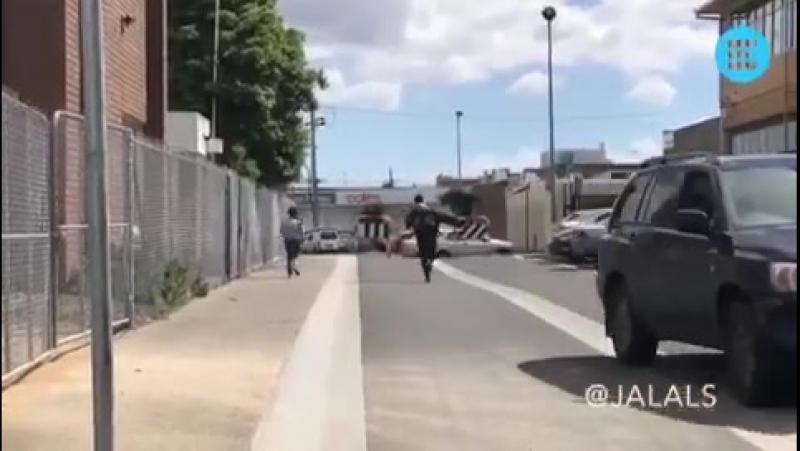 Прикол терак