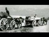 Крымскую соль экспортировали за Перекоп и в Турцию