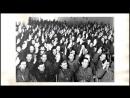 Что стояло за массовыми репрессиями 1937