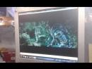 Bunker_nZ KiaRio УСТАНОВКА ЧЕХЛОВ С ПРОШИВКОЙ ПЕРЕДНИХ СИДЕНИЙ 1.5К