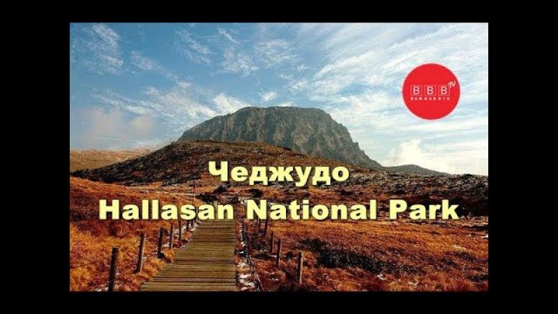 Південна Корея: острів Чеджудо та парк Халасан (Hallasan National Park)