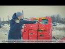 Сотрудники ОЭБиПК уничтожили 9 игровых автоматов в Северодвинске