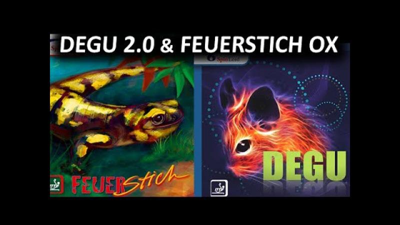 Играю на турнире short long pips FH Degu 2.0 mm BH Feuerstich OX на YINHE Def 11
