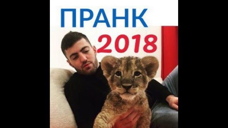 Вот это пранк 2018 хиза | vot eta prank 2018 Khiza Падборка Самые лучшие