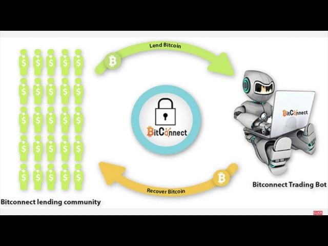 Bitconnect Sub Request! Video Response to David Hay!