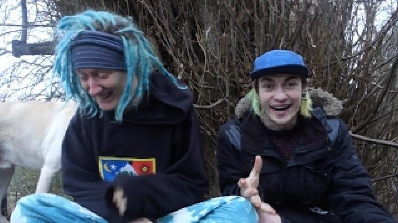 Shrooms Trip Report