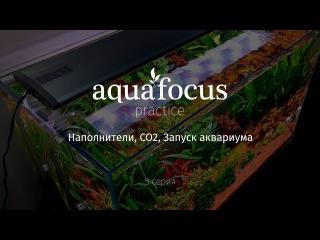 Наполнители, CO2, Запуск аквариума - Aquafocus practice (5 серия )