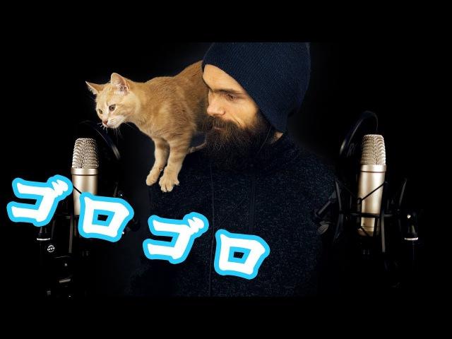日本語 猫asmr 僕の猫たちを紹介します 大変です!w 囁き・猫がゴロ