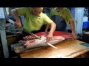 Top Amazing Fishing - Catch and Cook Fish - Fish Cutting - Big Carp Clean And Fillet Videos