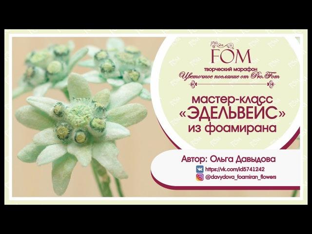 Pro.FOM/Про.ФОМ/ Мастер класс Эдельвейс из фоамирана. О. Давыдова