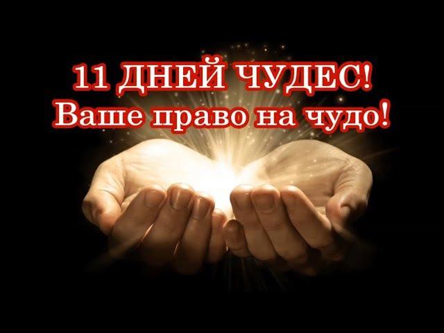 11 ДНЕЙ ЧУДЕС! Ваше право на чудо!