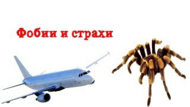 ☑️ Фобии и страхи | Боязнь пауков | Страх Летать | Лечение фобии с страхов | Арахн...