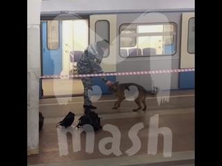 Полицейские хотят вернуть сумку с миллионом рублей человеку, который забыл ее в метро