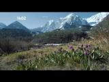 Загадочная красота Алтая завораживает! Живописные зеленые долины, водопады, горные хребты, белоснежные вершины и ледники...