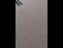 Прогулка по парку Горько