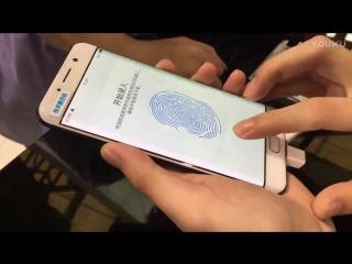 Дисплейный сканер отпечатков