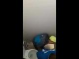 Два парня занимаются сексом в туалете