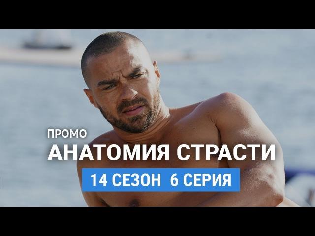 Анатомия страсти 14 сезон 6 серия Русское промо