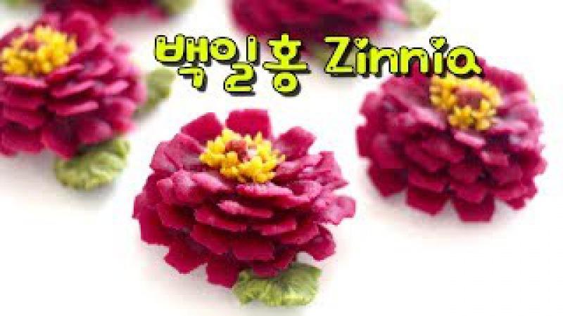 앙금플라워 백일홍 Zinnia ♡kidney bean paste flower piping techniques