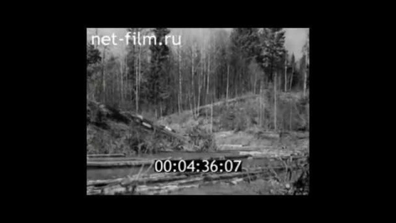 Чăваш Енĕ. 1940 ҫул. Молевой сплав леса на реке Бездна (приток Суры)