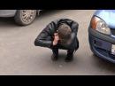 Пьяный на 15 или возмездие за хамство репортеру, Октябрьский. Место происшествия 24.07.2017