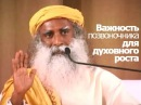 Важность позвоночника для духовного роста Садхгуру