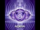 Нидра Йога. Тета медитация. 12 Аджна чакра. Эгрегоры, подсознание, интуиция, прошл...