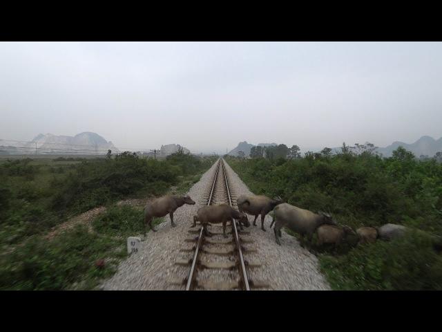 Train Driver record SE5 Ninh Binh Vinh 2017
