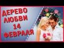 ✿✿✿День Святого Валентина Дерево любви Поздравление С днем всех влюбленных 14 февраля