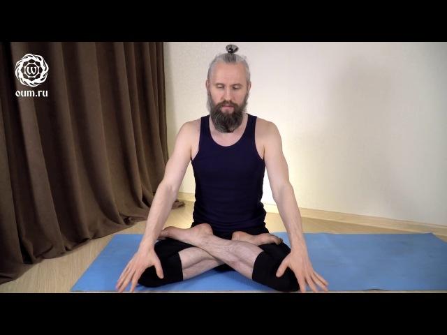 Как делать наули (йога волна или вакуум)