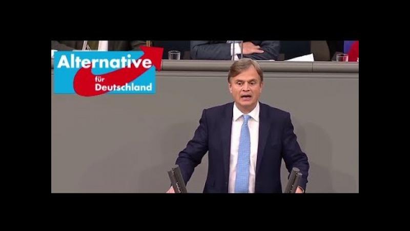 1. AfD-Antrag im Bundestag - Flüchtlinge zurück nach Syrien - 22.11.2017
