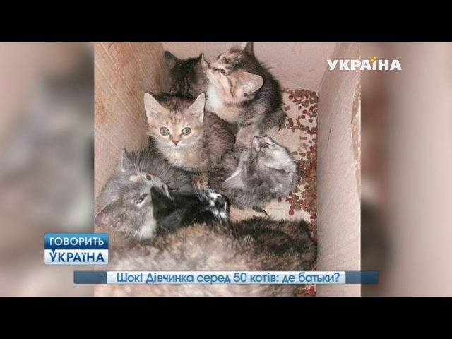 Шок! Девочка среди 50 кошек где родители (полный выпуск) | Говорить Україна