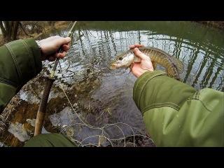 Видео рыбалка нахлыстом на малых реках 15
