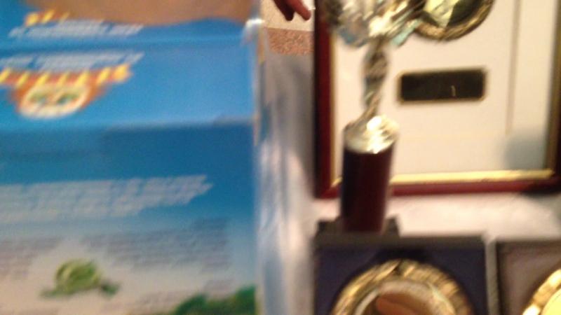 Лопуха Гузель Рашитовна, г.Мелеуз. Продукция – Талкан 8 (34764) 3-35-66. Кульбаев Салават. 8-927-23-07-969