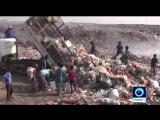 Croix-Rouge: les Yéménites sont en train de mourir de faim