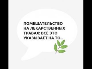 TED   Цитаты   Майкл Спектер