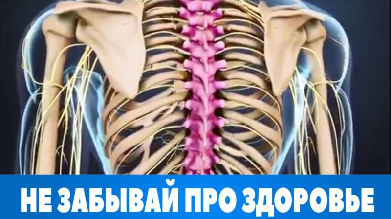 Комплексное обследование спины и позвоночника