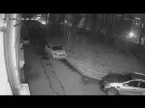 Нападение вандалов 18.11.2017.4