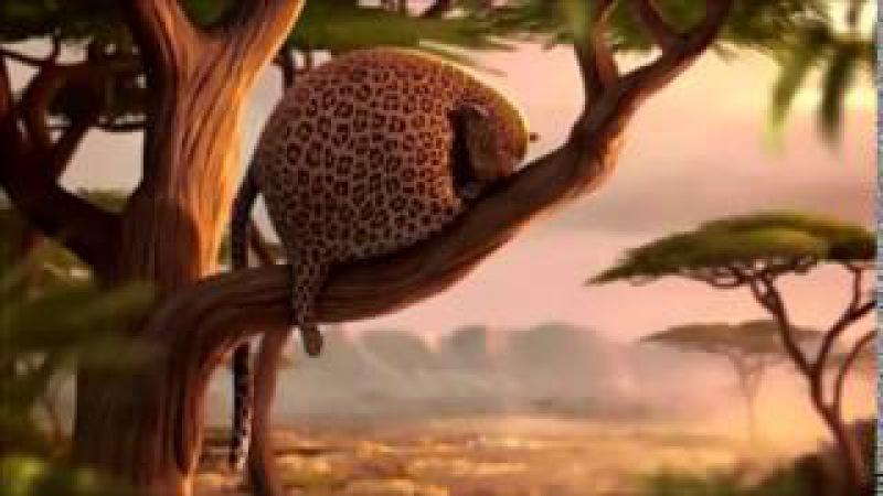 Прикольный мульт про леопарда