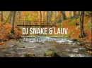 DJ Snake LAUV A Different Way Conyr Cover Audio