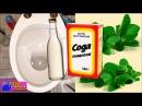 Сода. Туалет. Как отмыть туалет содой без химии от налета от запаха