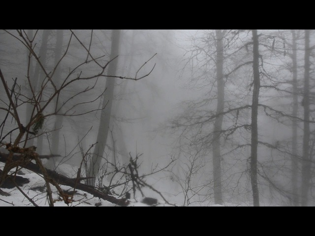 Спуск в Хапхал туман и дождик снежный