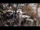 экосистема Крым Ялта ecosystem Crimea Yalta