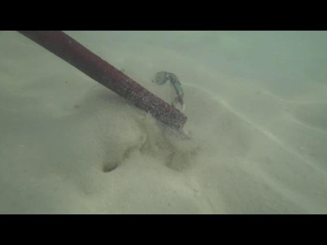 Ловим крабов на Кайо Гильермо, декабрь 2017