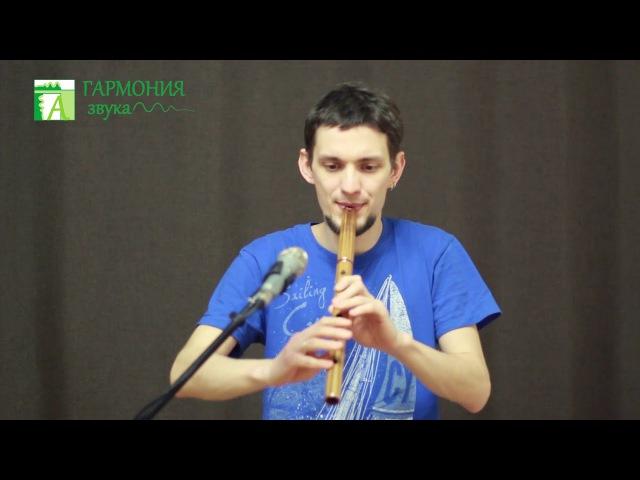 Гармония звука - Кена в Фа из тика. Импро